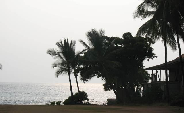 Shoreline right in town